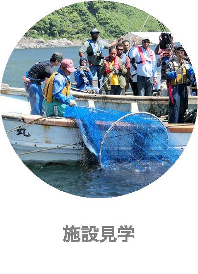 下松市栽培漁業センターの施設見学