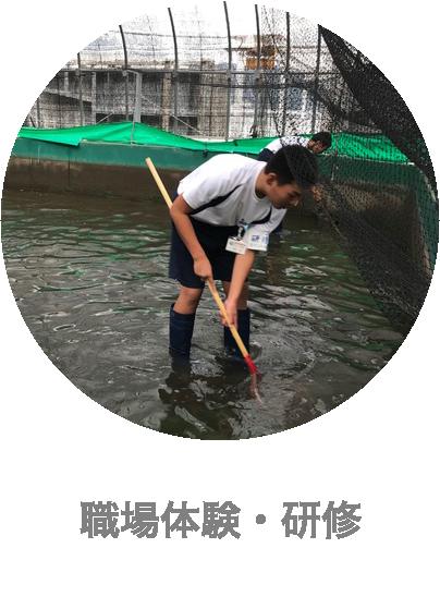 下松市栽培漁業センターの職場体験・研修の受け入れ